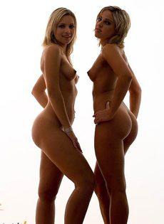 Очаровательные красавицы! - фото #