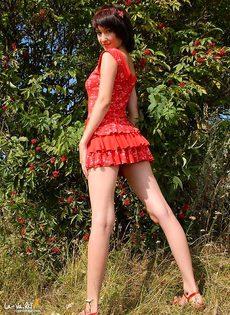 Таиса в лесу - фото #