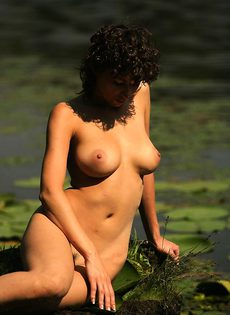 Лесная красавица - фото #