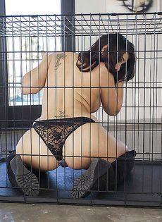 В клетке сидит брюнетистая стерва с большой задницей - фото #