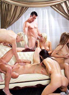 Голливудское секс шоу с начинающими порнозвездами - фото #3