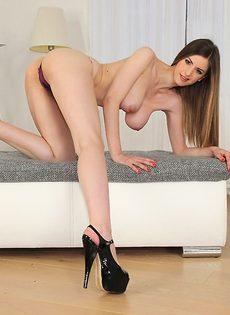 Соблазнительная девушка Stella Cox с красивой натуральной грудью - фото #14