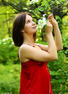 В весеннем саду - фото #