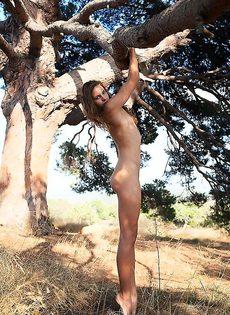 Голая девушка у сосны - фото #