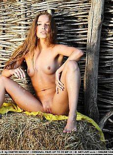 Деревенская звезда - фото #