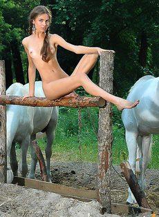 Пыталась соблазнить коня - фото #