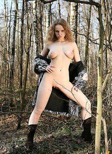Прогулка по дикому лесу - фото #