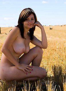 На свежи скошенном поле - фото #