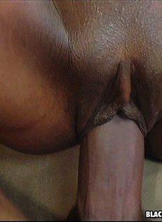 Обрызгал спермой весь зад - фото #