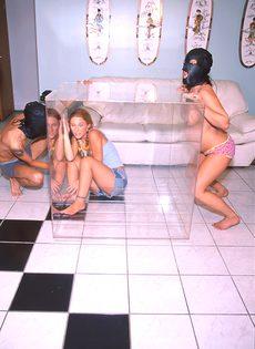 Мазохисты эксплуатируют 3-х телок поочереди - фото #