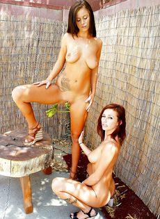 Очаровательные девчонки вылизывают сладенькие дырочки