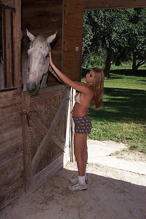 Сексс в конюшне
